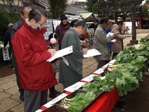 品川区内外の小学校、保育園など12団体が参加、審査員が葉の大きさや全体のバランスを評価した