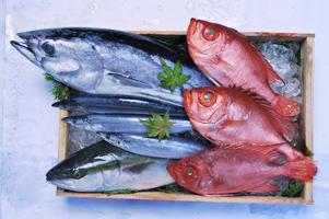 全国各地の鮮魚をはじめ様々な新鮮食材が揃う