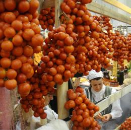 """""""レッジーナ""""と呼ばれる原種のミニトマト"""