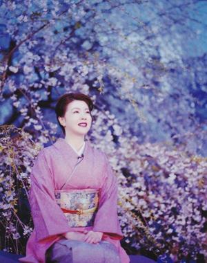 六義園のしだれ桜の花の下で「しだれ桜」を語る平野啓子さん