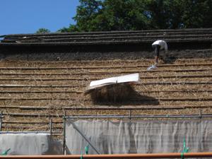 散策当日、小林家住宅は屋根の葺き替え中