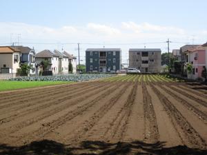 周辺には畑と住宅街が広がる