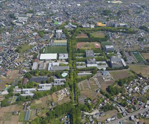 空から見た湘南キャンパス
