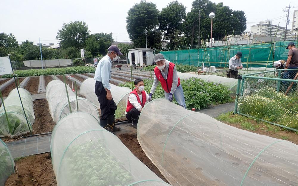 都市農地を福祉分野で活用する農福連携農園「すぎのこ農園」の様子